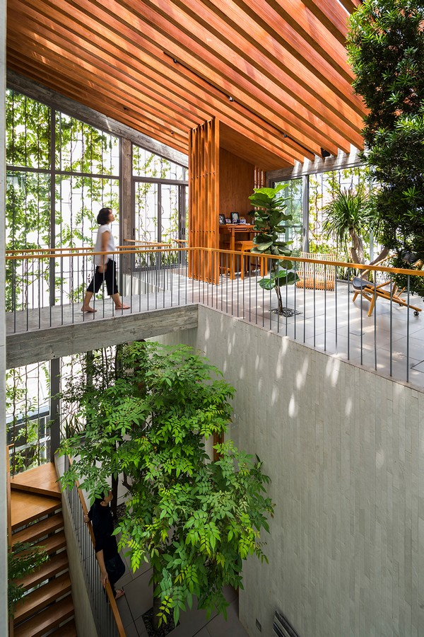 thiết kế kiến trúc stepping park house
