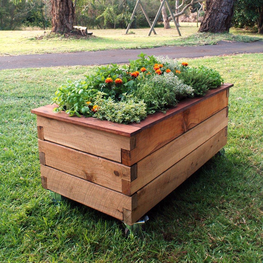 DIY hộp gỗ trồng cây