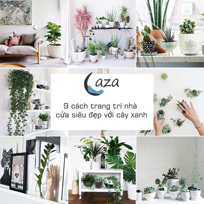Cách đưa cây xanh vào nhà