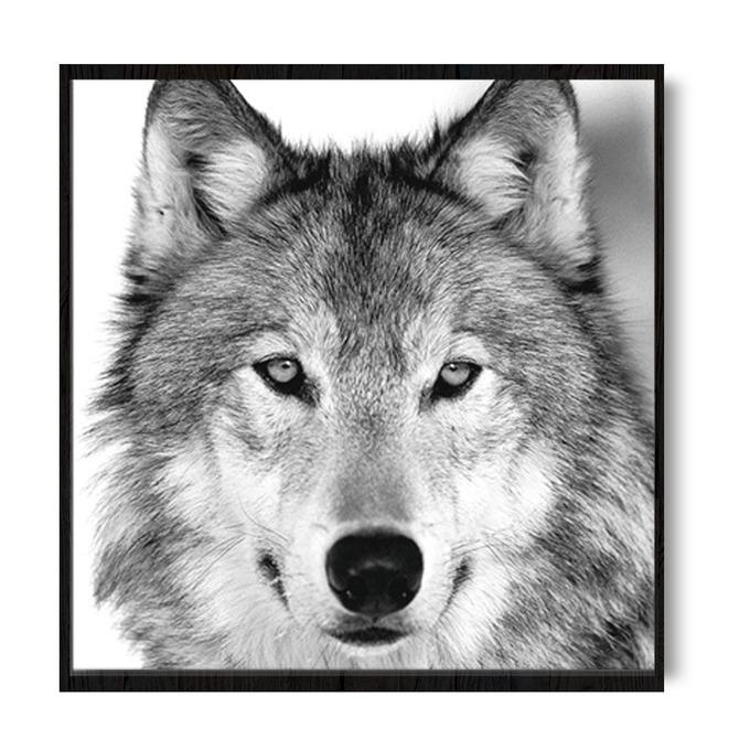 TRANH TREO TƯỜNG WOLF