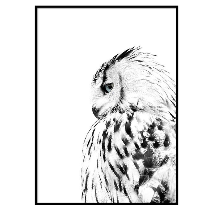TRANH WHITE OWL